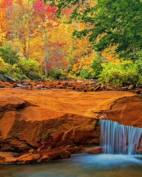 Green Jay Photograph - Usa, West Virginia, Douglass Falls by Jaynes Gallery
