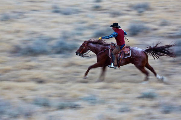 Racing Shell Photograph - Usa, Wyoming, Shell, Cowboy At Full by Terry Eggers