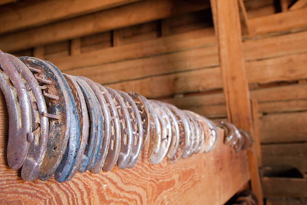 Wall Art - Photograph - Usa, Wyoming, Shell, Horseshoes In A Row by Hollice Looney