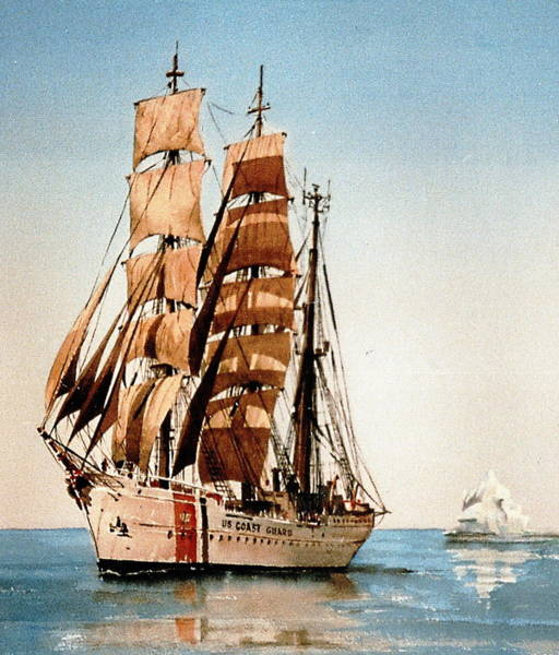 Painting - Usc Eagle In The Arctic by Val Byrne