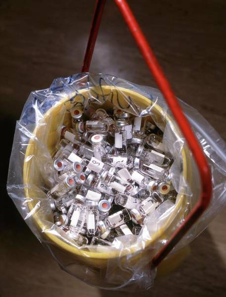 Wall Art - Photograph - Used Vials In A Bucket For Waste Disposal by Tek Image/science Photo Library