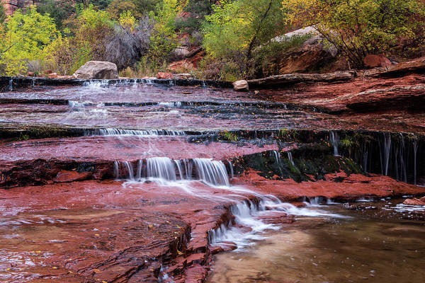 Wall Art - Photograph - Utah, Zion National Park, Water by Jamie and Judy Wild