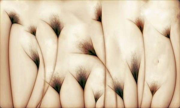 Wall Art - Photograph - Vaginae Terram by Carlos P. Vazquez