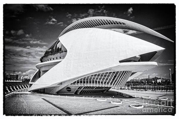 Photograph - Valencia-14 by Mauro Celotti