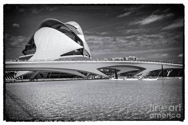 Pyrography - Valencia-17 by Mauro Celotti