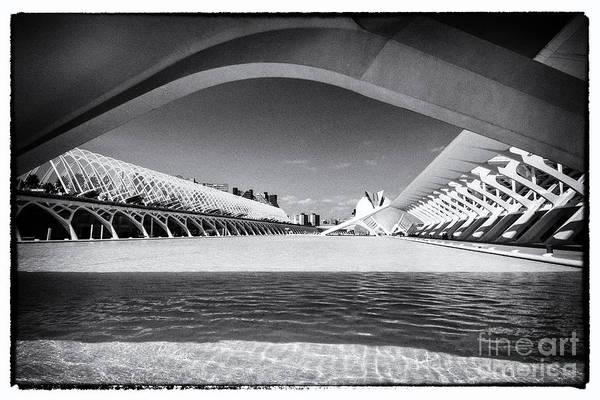 Pyrography - Valencia-19 by Mauro Celotti