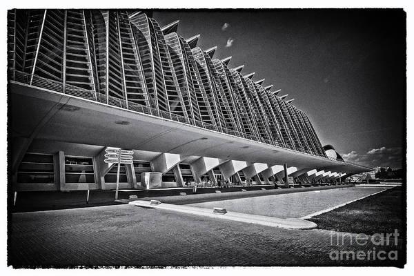 Pyrography - Valencia-22 by Mauro Celotti