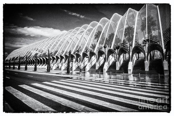 Pyrography - Valencia-8 by Mauro Celotti