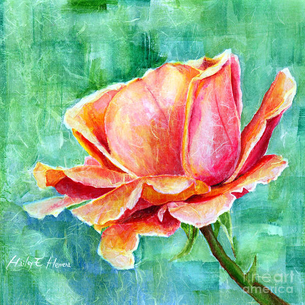 Close-up Painting - Valentine Rose by Hailey E Herrera