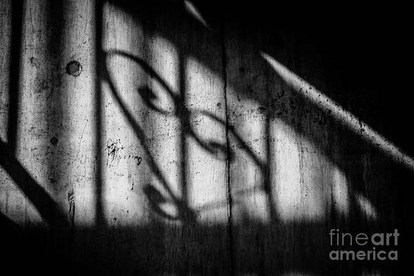 Wall Art - Photograph - Valentine - Some Kinds Of Love by Dean Harte