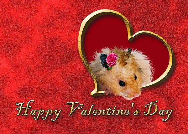Golden Hamster Photograph - Valentine's Day Hamster by Jeanette K