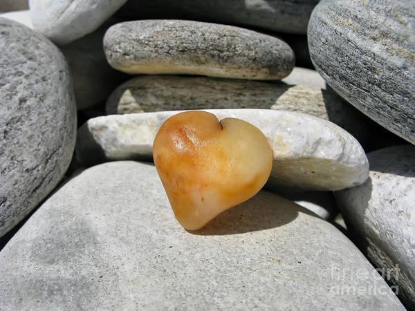 Photograph - Valentine's Day - Precious Heart by Daliana Pacuraru