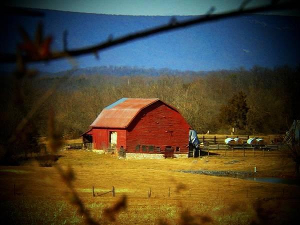 Frederick County Wall Art - Photograph - Valley Barn by Joyce Kimble Smith