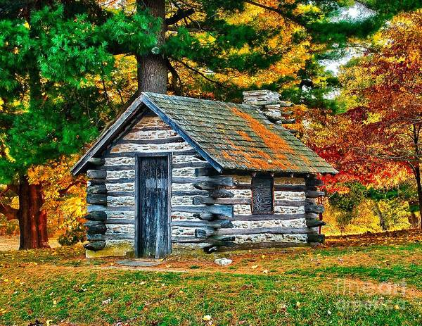 Photograph - Valley Forge Hut by Nick Zelinsky