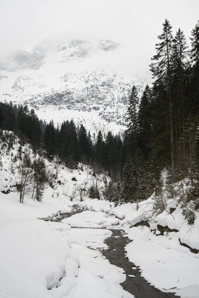 Photograph - Valley In Winter by Matthias Hauser
