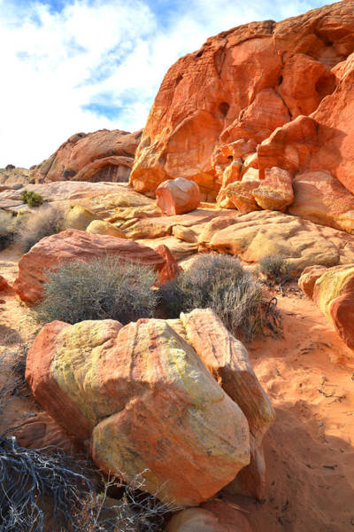 Photograph - Valley Of Fire 113 by Ray Mathis