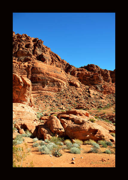 Valley Of Fire Painting - Valley Of Fire Nevada State Park Duvet by Barbara Snyder