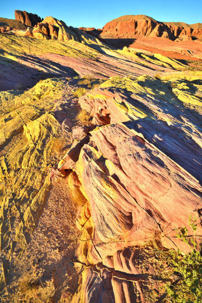 Photograph - Valley Of Fire - On Top by Ray Mathis