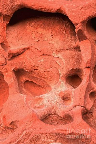 Photograph - Valley Of Fire Rock Face by Adam Jewell