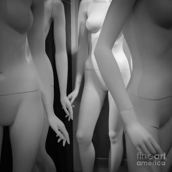 Wall Art - Photograph - Valley Of The Dolls by Edward Fielding