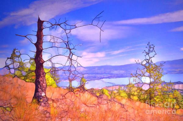 Kelowna Wall Art - Photograph - Valley Views by Tara Turner