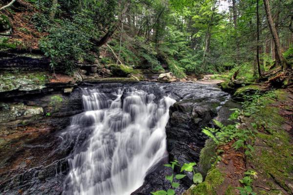 Photograph - Van Campens Falls by Dawn J Benko