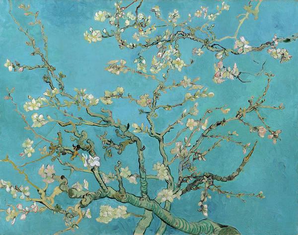 Wall Art - Painting - Van Gogh Almond Blossom by Granger