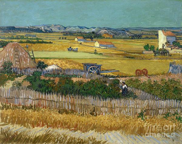 Painting - Van Gogh Wheatfield 1888 by Granger