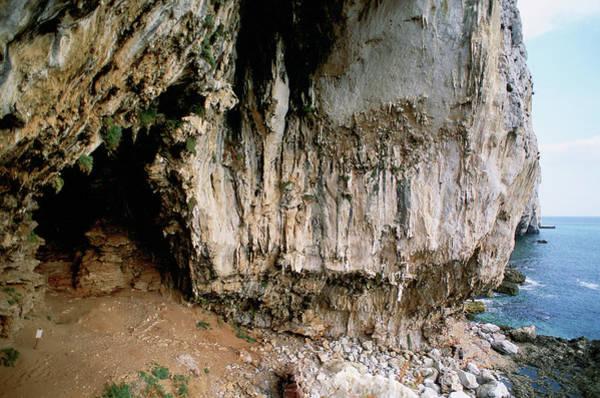Wall Art - Photograph - Vanguard Cave by Javier Trueba/msf/science Photo Library