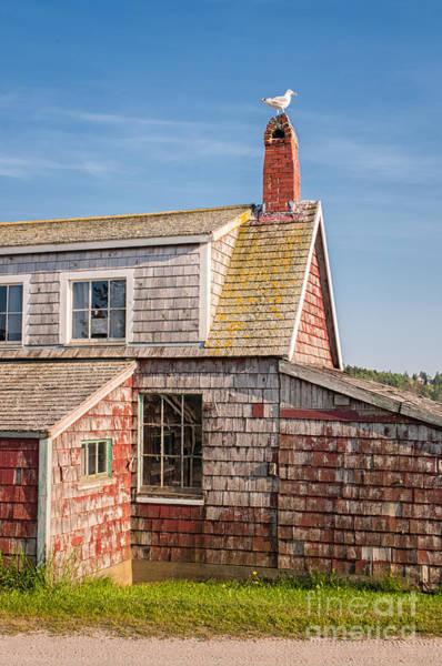 Lobstering Photograph - Vanishing Maine by Scott Thorp