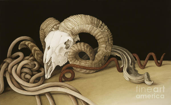 Ram Painting - Vanitas by Jenny Barron