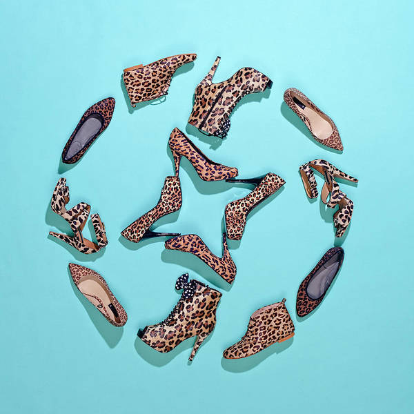 Shoe Photograph - Various Leopard Print Shoes Arranged In by Fstop Images - Larry Washburn