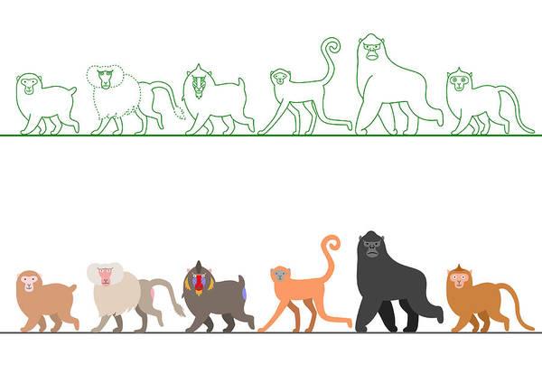 Individuality Digital Art - Various Monkey Walking In A Row by Ayutaka