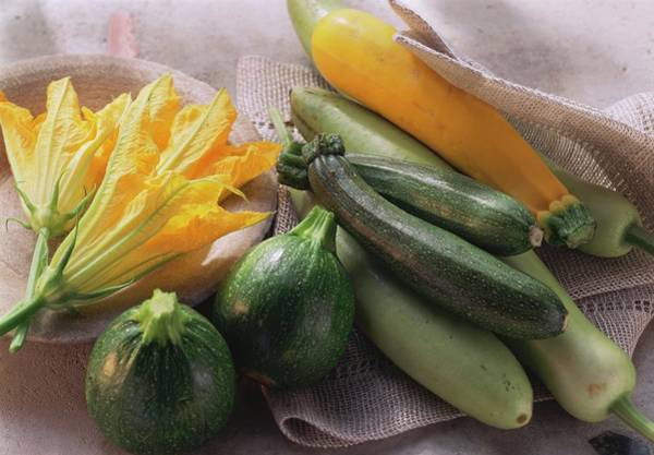 Cucurbits Photograph - Various Varieties Of Courgettes And Courgette Flowers by Eising Studio - Food Photo and Video