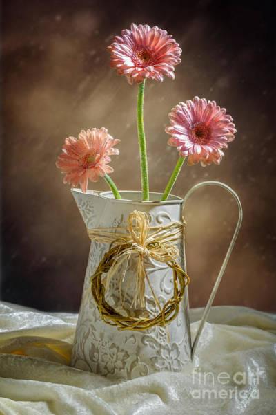 Single Mother Wall Art - Photograph - Vase Of Gerbera Flowers by Amanda Elwell