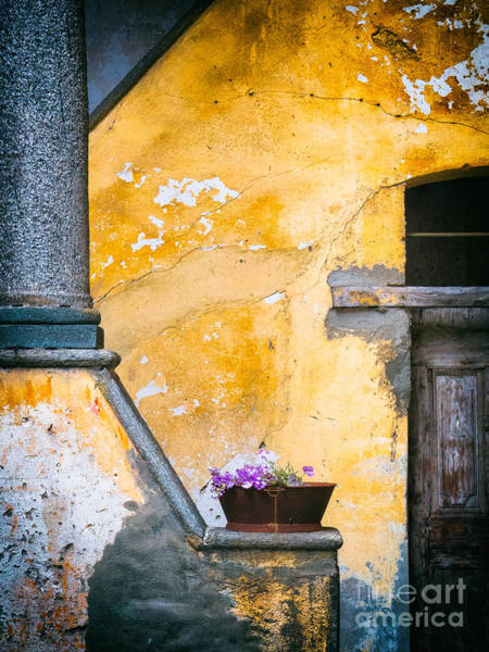 Photograph - Vase With Column by Silvia Ganora
