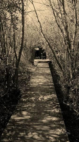 Photograph - Vaseux Lake Bird Sanctuary Haunted by Guy Hoffman