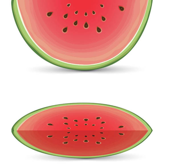 Vegetarian Digital Art - Vector Watermelon Slice by Fitie