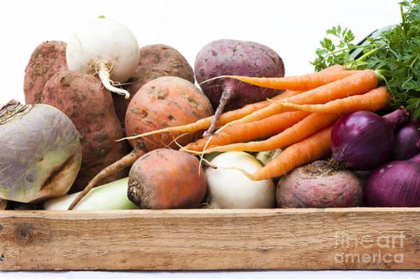 Purple Carrot Photograph - Veg Box by Anne Gilbert
