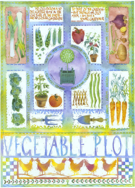 Vegetable Patch Wall Art - Painting - Vegetable Plot by MGL Meiklejohn Graphics Licensing