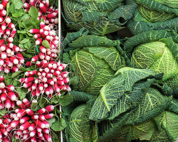 Retail Photograph - Vegetables - Cabbages And Radish by A J Withey