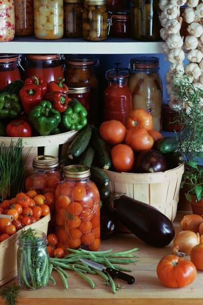 Tomato Photograph - Vegetables For Pickling by Emerick Bronson