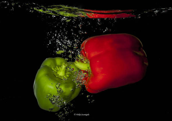 Photograph - Veggie Bath by Vickie Szumigala