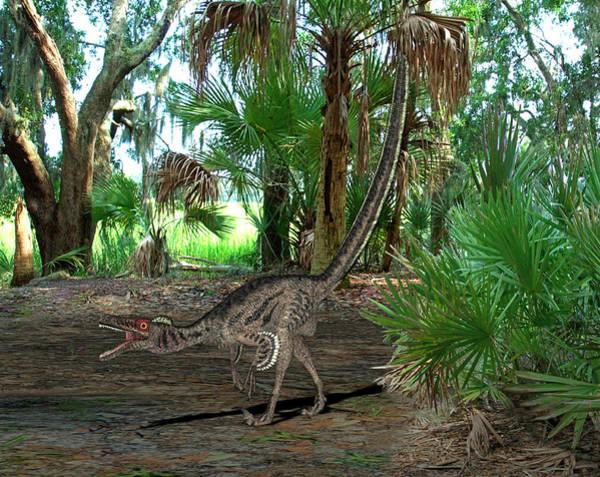 Paleozoology Wall Art - Photograph - Velociraptor Dinosaur by Friedrich Saurer