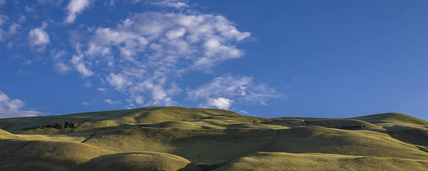 Photograph - Velvet Hills by Albert Seger