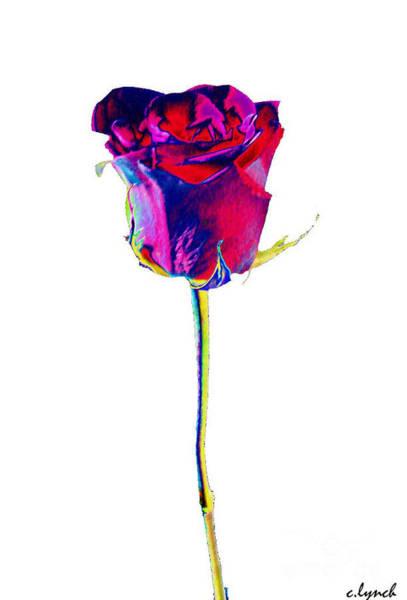 Rose Bud Digital Art - Velvet Rose Bud by Carol Lynch