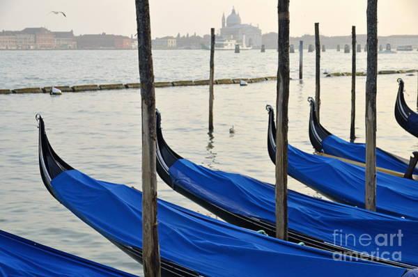 Wall Art - Photograph - Venetian Lagoon And Moored Gondolas by Sami Sarkis