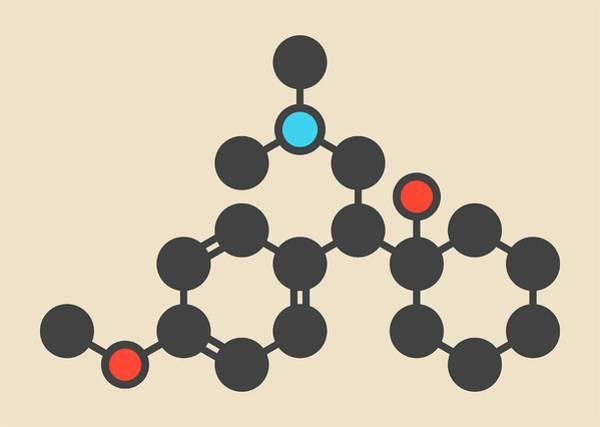 Psychiatry Photograph - Venlafaxine Antidepressant Drug Molecule by Molekuul