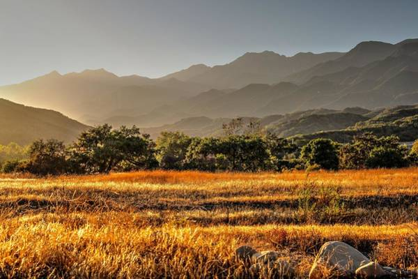 Ventura Photograph - Ventura River Preserve by Liz Vernand