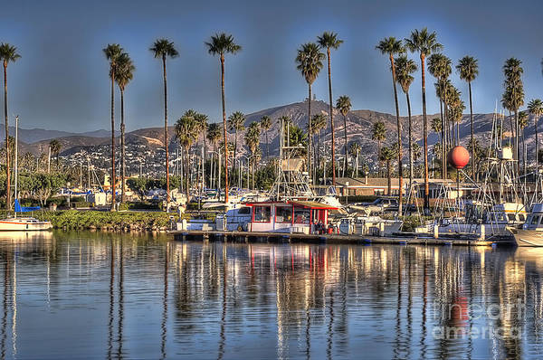 Photograph - Ventura Scene With Palm Trees by Dan Friend